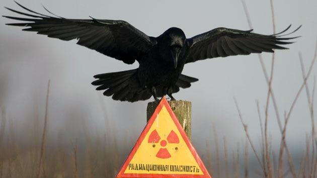 © REUTERS Vasily Fedosenko