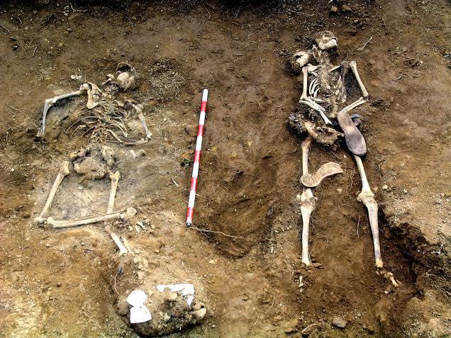 Restos hallados en la fosa de Encinasola. // Juanma Guijo y Amhyja